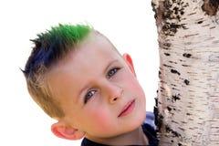 Giovane ragazzo che abbraccia albero Immagini Stock Libere da Diritti