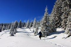 Giovane ragazzo che scala durante l'inverno Fotografie Stock