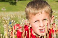 Giovane ragazzo che si nasconde in denti di leone Fotografia Stock Libera da Diritti