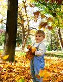 Giovane ragazzo con i fogli di autunno Fotografia Stock