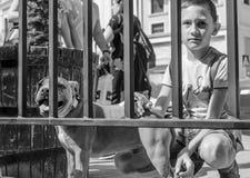 Giovane ragazzo con il cane di animale domestico fotografia stock