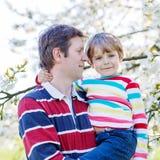Giovane ragazzo del bambino e del padre in giardino di fioritura Fotografia Stock Libera da Diritti