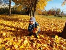 Giovane ragazzo del primo piano con le foglie di caduta fotografie stock