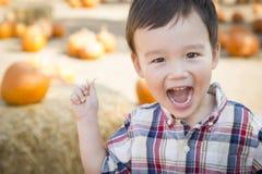 Giovane ragazzo di risata della corsa mista divertendosi alla toppa della zucca Fotografia Stock Libera da Diritti