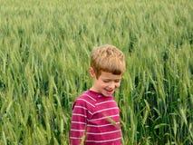 Giovane ragazzo nei campi immagini stock libere da diritti