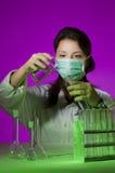 Giovane ricerca del chimico Fotografia Stock Libera da Diritti