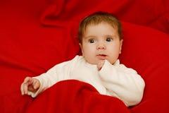 Giovane ritratto del bambino immagini stock