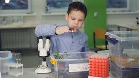 Giovane scienziato alla scuola che fa un esperimento di biologia in laboratorio archivi video