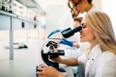 Giovane scienziato che guarda tramite il microscopio in laboratorio Immagini Stock Libere da Diritti