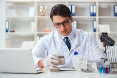 Giovane scienziato del ricercatore che fa un expe di contaminazione della prova di acqua Immagini Stock Libere da Diritti