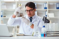 Giovane scienziato del ricercatore che fa un expe di contaminazione della prova di acqua Immagini Stock
