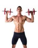 Giovane senza camicia muscolare che esercita le spalle con le teste di legno immagine stock libera da diritti