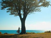 Giovane signora con un bello albero fotografie stock