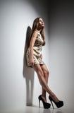 Giovane signora graziosa in vestito sopra fondo grigio Immagine Stock