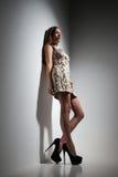 Giovane signora graziosa in vestito sopra fondo grigio Fotografie Stock