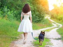 Giovane sposa che cammina con il cane fotografia stock libera da diritti