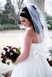 Giovane sposa elegante Fotografie Stock Libere da Diritti