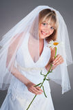 Giovane sposa felice con un chamomille Fotografia Stock Libera da Diritti