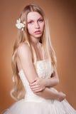 Giovane sposa in studio Fotografia Stock