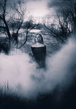 Giovane strega Immagine Stock