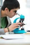 Giovane studente maschio bello che scruta tramite il microscopio Fotografia Stock