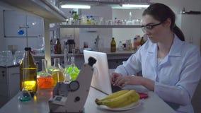 Giovane tecnico di laboratorio che lavora nel laboratorio stock footage