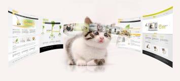 Giovane tecnologia Fotografia Stock