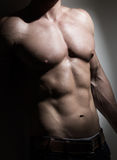 Giovane torso muscolare dell'uomo fotografia stock libera da diritti