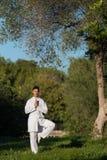 Giovane uomo caucasico che fa yoga nel parco Fotografia Stock