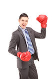 Giovane uomo d'affari felice con i guantoni da pugile rossi Immagini Stock