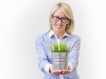 Giovane vaso della tenuta della donna di affari con erba verde decorativa Fotografia Stock Libera da Diritti