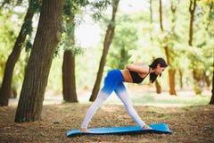 Giovane yoga dei professionisti della donna di yoga sulla natura fiore della sfuocatura della priorità bassa all'interno come gli Immagine Stock Libera da Diritti
