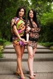 Giovani adulti Due giovani donne Immagine Stock Libera da Diritti