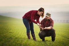 Giovani agricoltori che examing giovane grano piantato durante la stagione invernale Fotografia Stock