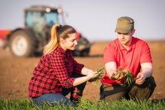 Giovani agricoltori che examing grano piantato mentre il trattore sta arando il fi Fotografie Stock Libere da Diritti