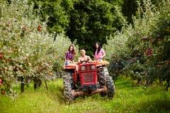 Giovani agricoltori su un trattore nel meleto Fotografia Stock Libera da Diritti