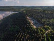 Giovani alberi, piantagioni sui pendii Vista aerea sul canyon di Nistro, fiume, baia di Bakota in parco nazionale Podilski Tovtry fotografia stock libera da diritti