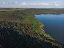 Giovani alberi, piantagioni sui pendii Vista aerea sul canyon di Nistro, fiume, baia di Bakota in parco nazionale Podilski Tovtry immagine stock