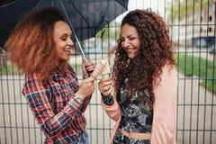 Giovani amici che mangiano insieme gelato Immagini Stock Libere da Diritti