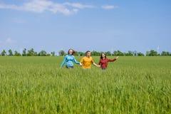 Giovani amici felici che corrono sul giacimento di grano verde Fotografia Stock