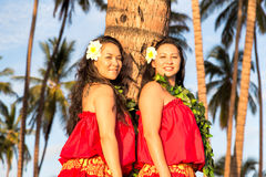 Giovani ballerini di hula Fotografie Stock