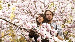 Giovani belle coppie sorridenti felici che posano vicino all'albero di fioritura video d archivio