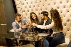 Giovani che celebrano e che tostano con il vino bianco Fotografia Stock Libera da Diritti