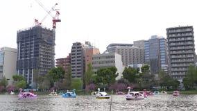 Giovani che galleggiano sulle barche multicolori del cigno archivi video