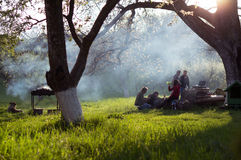 Giovani che hanno barbecue fuori nel giardino fotografie stock