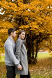 Giovani coppie adorabili nella foresta di autunno Fotografie Stock Libere da Diritti