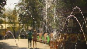 Giovani coppie che camminano nel parco verde Uomo e donna alla data romantica Albero nel campo archivi video