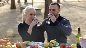 Giovani coppie che hanno picnic video d archivio