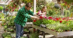 Giovani coppie che piantano i fiori in giardino archivi video