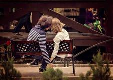 Giovani coppie che si tengono per mano sul banco in parco fotografie stock libere da diritti